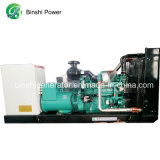 Motor Cummins diesel de 500kVA Generador / Grupo electrógeno Qsz13-G3 (BCS400)