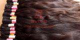 Rohes Haar-Jungfrau Remy Häutchen-intakte Menschenhaar-Masse