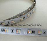 5in1 5050 het LEIDENE RGB+W/Ww RGB+CCT Licht van de Strook