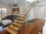 Larguero del doble del reparto/escalera caliente de la viga/escaleras de cristal con el pasamano de cristal y la pisada de madera