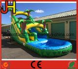 Diapositiva inflable de la venta caliente con la piscina para los adultos y los cabritos