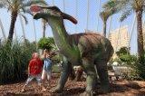 L'esposizione/sosta del dinosauro del modello di simulazione