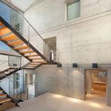 박판으로 만들어진 유리를 가진 현대 유리제 뜨 계단