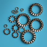 DIN6798A-M3 en acier inoxydable de la rondelle de blocage dentelée externe
