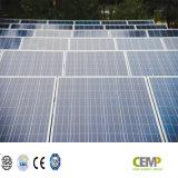 Qualità nella prima linea del comitato solare policristallino di Cemp 305W PV