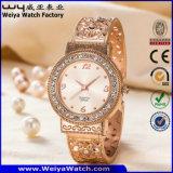 Orologio casuale di modo delle signore dell'acciaio inossidabile (WY-P17007C)