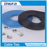 """Fita de aço inoxidável despida flexível para ligar tamanhos padrão 1/2 '' 3/4 """""""