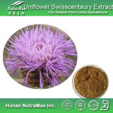 10:1 Used 100% естественное Radix Rhapontici Extract для Beauty