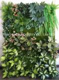 Parete verde per la decorazione dell'hotel