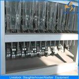 Maiale Abattoir Equipment con Capacity flessibile