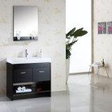 De Enige Ijdelheid van het Kabinet van de Basis van de Ijdelheid van de badkamers
