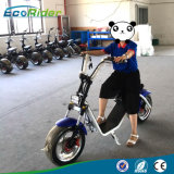 Ecorider Citycoco Electric Scooter 60V 12ahの取り外し可能な電池を持つピンクカラー女性