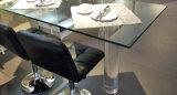 Самомоднейшая акриловая мебель кухни (zv-020)
