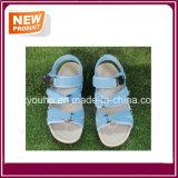 Sandalias azules de la playa de los colores para la venta