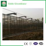 Serre chaude en verre utilisée pour horticulture avec la structure métallique