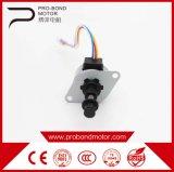 Motor de movimentação linear das correntes elétricas novas do enrolamento