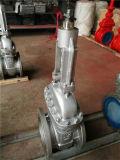 ANSI Cl150, verdoppeln geflanschten Absperrschieber