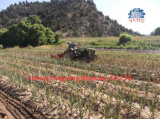 Escavador Digger do alho da alta qualidade do trator de exploração agrícola para o trator de Yto