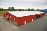Edificio de almacenaje de la granja de la estructura de acero (KXD-SSB1251)