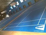 배드민턴 경기장을%s 마루가 실내 PVC에 의하여