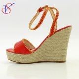 Madame gîtée élevée de femmes de mode de sexe Shoes Sandals pour socialement les affaires Sv-Wf-020
