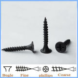 Buge Head Philip Drywall Screws Fine Thread à Guangzhou
