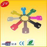 Mini USB Flash Drive di Metal Key Shape con CE RoHS