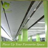 Dia 80mm het Aluminium van de Decoratie om het Plafond van het Profiel van de Buis