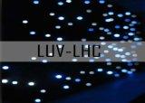 LED Star Gordijn/LED Horizon DMX Gordijn aanpassen (LED in één kleur)