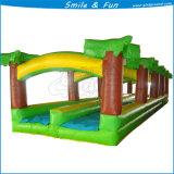 Hersteller-variables Geschwindigkeits-Laufring-Wasser-Plättchen für Wasser-Park/Spielplatz