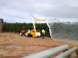 Rede da saraiva da árvore de fruta da rede do protetor da saraiva do HDPE anti