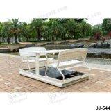 Стул качания, напольная мебель, мебель сада (JJ-544)