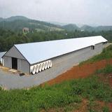 プレハブの鉄骨構造の農場の家禽の小屋