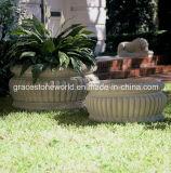 Decoration를 위한 돌 정원 Planter