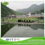 Tratamiento combinado de aguas residuales enterrado para desalojar diferentes iones de metales pesados