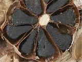 絶妙なパッキングが付いている有機的統一体の黒いニンニク