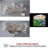 UL CE LED Party Lights fio verde fio branco