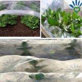 Tessuto biodegradabile del Nonwoven delle tessile di uso domestico 100% pp Spunbond di agricoltura