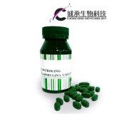 Precio competitivo extracto vegetal Cápsulas de adelgazamiento