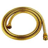 Macchina di rivestimento dell'oro PVD della toletta di Siphonic