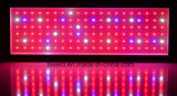 Hydroponics СИД растет светлые приспособления с полным спектром