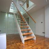 Escalier en verre droit préfabriqué de modèle moderne avec la semelle solide d'escalier de chêne