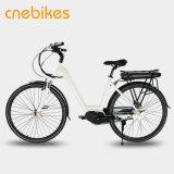 리튬 전지 효력 중앙 모터 전기 도시 자전거