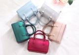 Borsa delle donne della borsa del sacchetto della gelatina delle borse della gomma di silicone del PVC del sacchetto delle signore