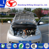 Горячее высокое качество надувательства и безопасный удобный электрический автомобиль