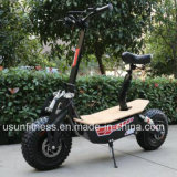 2000wattモーターを搭載する強力な緑の電気移動性のスクーター