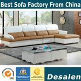 Мебель софы офиса оптовой цены фабрики самомоднейшая (B. 928)