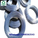 Galvanized Iron Wire for Binding