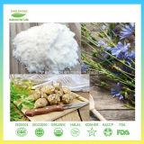 Polvere pura dell'inulina del topinambur dell'estratto del commercio all'ingrosso naturale dell'inulina