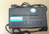 43,2V 2A LiFePO4 Carga de batería de plomo ácido para Bicicleta eléctrica